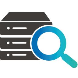 Icon für IT-Sicherheit sowie Server- und Netzwerksicherheit